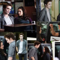 New Moon (twilight Saga)