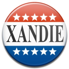 Election Campaign Button