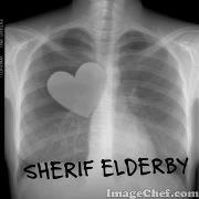 Shiref Elderby