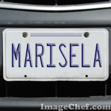 License Plate Generic