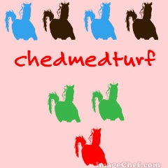 chedmedturf